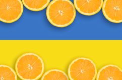 Ukraina flagga i citrusfruktskivahorisontalram royaltyfri bild