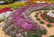 UKRAINA KIEV: på Spivoche Pole, en utställning av blommor Arkivfoto
