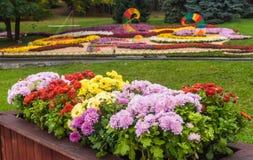 UKRAINA KIEV: på Spivoche Pole, en utställning av blommor Arkivfoton
