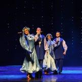 Ukraina sala balowej Ukraina egzota Austria światowy taniec Zdjęcie Royalty Free