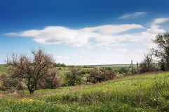 Ukraina.Stepnoy landscape Stock Photos