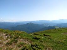 Ukrainare Carpathians Arkivfoto