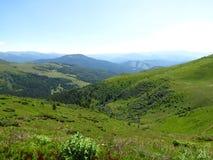 Ukrainare Carpathians Royaltyfri Bild