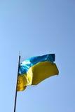 Ukrainare sjunker Arkivbild