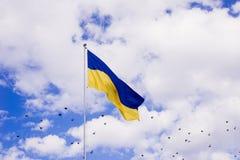 Ukrainare sjunker royaltyfria foton