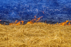 Ukraine afire. Burning yellow grass and blue smoke and ashes like the Ukrainian flag. Line of Fire shares a peaceful territory and the war on the ground in Royalty Free Stock Photo