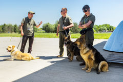 Ukraine, Borispol - MAY 22 : Dog Service Boryspil International Airport on May 22, 2015 in Borispol, Ukraine Royalty Free Stock Images