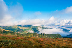 Ukraine, Carpathians mauntains, Сhernogirskiy array Royalty Free Stock Images
