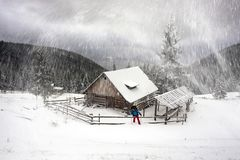Blizzard lonely house. Ukraine, Carpathians strong snowstorm covered the mountains of sugar crust, like frosting. A lone traveler in the majestic wild winter Stock Image