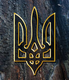 Ukraine Coat of Arms Stock Image