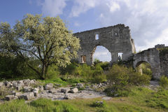 Ukraine. Crimea. Cave town of Mangup Kale. Ruins of Citadel and the blooming tree at spring Stock Image