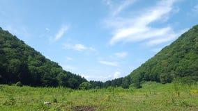 ukraine dolina halna dolina Fotografia Stock
