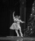 Ukraine envoy- The second act second field candy Kingdom -The Ballet  Nutcracker Royalty Free Stock Photography