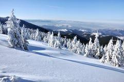 ukraine för dragobratliggandeberg vinter Fotografering för Bildbyråer