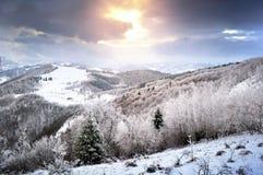 ukraine för dragobratliggandeberg vinter Royaltyfri Fotografi
