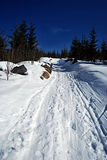 ukraine för dragobratliggandeberg vinter arkivbilder