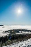 ukraine för sun för strålar för stående för crimea aftonvandring vinter royaltyfri foto
