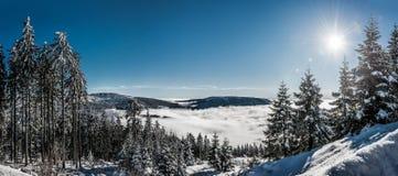 ukraine för sun för strålar för stående för crimea aftonvandring vinter royaltyfria bilder