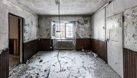 ukraine för sun för strålar för stående för crimea aftonvandring vinter royaltyfri fotografi