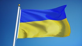 Ukraine flag in slow motion seamlessly looped with alpha. Ukraine flag waving in slow motion against clean blue sky, seamlessly looped, close up, isolated on stock footage
