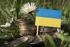 Ukraine flag with stack of money coins with grass. And flowers Royalty Free Stock Photography