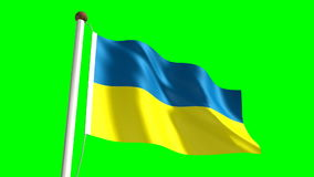 Ukraine flag. Video (seamless & green screen stock video footage