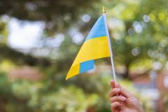 Female hand with a blue and yellow flag Ukraine Independence Day. Ukraine Independence Day female hand with a blue and yellow flag, national, kyiv, yellow-blue stock photo
