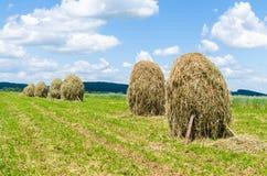 UKRAINE, JUNE, 2017: Hay stacks  on farmland against the blue sky. UKRAINE, JUNE, 2017:  Day countryside landscape. Hay stacks on farmland against the blue sky Royalty Free Stock Image