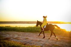 Girl riding a horse on a lake royalty free stock images