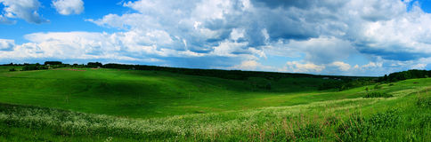 Ukraine meadow Royalty Free Stock Photography