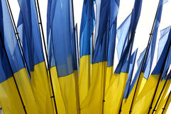 Ukraine national flag Stock Image