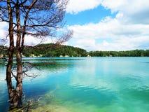 Ukraine-Natur Lizenzfreies Stockbild
