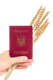 Ukraine passport Royalty Free Stock Image
