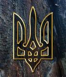 Ukraine-Wappen Stockbild