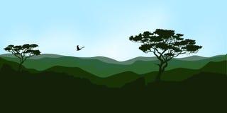 ukrainian гор рассвета carpathians принятый изображением был Стоковое фото RF