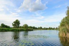ukrainian природы ландшафта типичный Стоковое фото RF