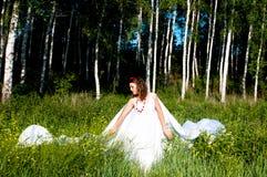 ukrainian рощи девушки способа березы Стоковое Изображение