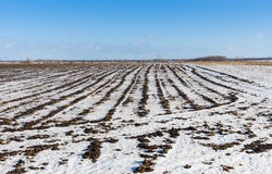 Ukrainian agricultural landscape Stock Photos