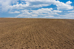 Ukrainian agricultural simplicity Stock Images