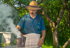 Ukrainian bee-keeper with fuming smoker. Portrait of Ukrainian bee-keeper with fuming smoker at work place Stock Photos