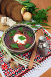 Ukrainian borsch Royalty Free Stock Photo