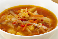 Ukrainian borsch Stock Images