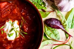 Ukrainian borsch Royalty Free Stock Image