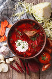 Ukrainian borsch soup and ingredients closeup. vertical top view Stock Image