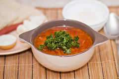 Ukrainian borsch, soup. On a table there is a borsch cooked by a dinner Stock Photos