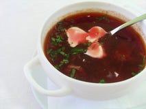 Ukrainian borscht. In a bowl Royalty Free Stock Photo