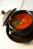 Ukrainian borscht Royalty Free Stock Photos