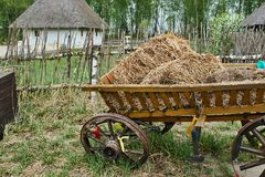 Ukrainian cart with hay stock photography