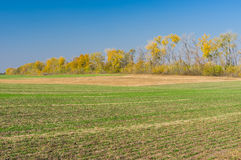 Ukrainian country landscape with seasonal agricultural fields Stock Photo
