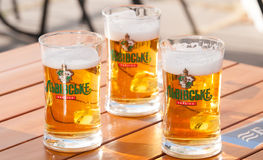 Ukrainian draught beer Stock Photography